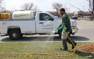 Fertilizer and Weed Control Applications – Pros and Cons of Doing It Yourself